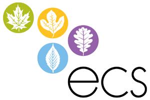 ECS_4C